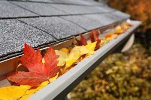 Gutter Cleaning New Orleans - Metairie