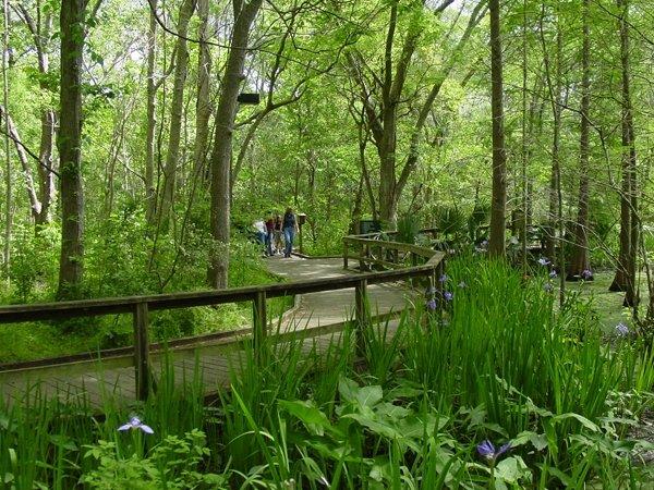 Audubon Louisiana Nature Center